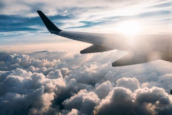cricket team trips flights