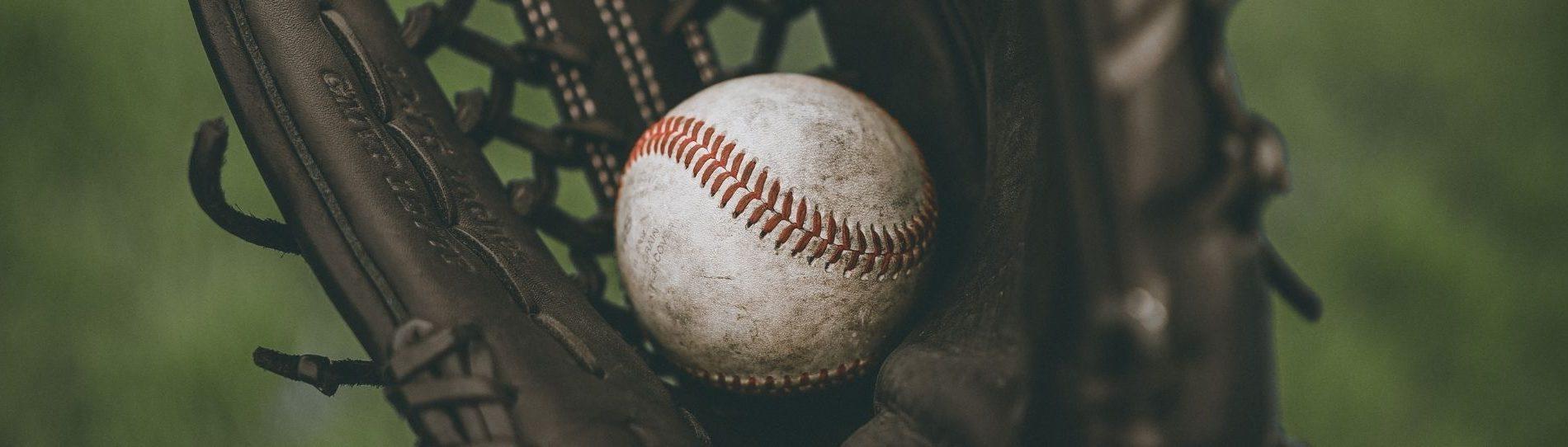 team trips baseball end of season trip