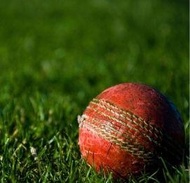 cricket team trip planning